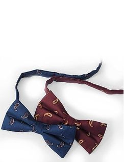 PACK OF TWO BOWTIES