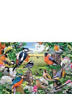 Birds Of All Seasons Jigsaw Puzzle