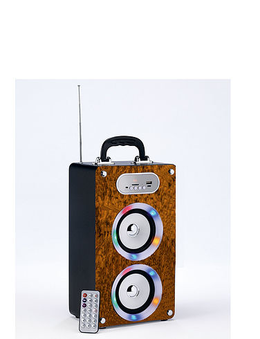 Portable Soundbox Radio