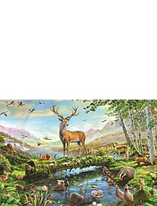 1500pc JIgsaw Puzzle Wildlife Spring