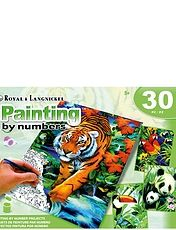 Set Of 4 Painting By Numbers