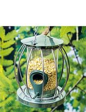 Squirrell Proof Bird Feeder