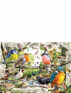 Our Featherd Friends - 1000pc Jigsaw Puzzle