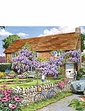 Wisteria Cottage XL Jigsaw