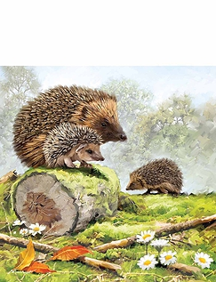 Hedgehog Family Jigsaw
