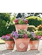 Set of 4 Fleur De Lys Garden Planters