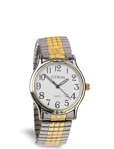 Citron Mens Two Tone Expander Watch