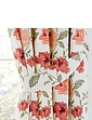 Flecity Lined Curtains and Tie Backs